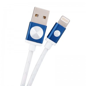 Wholesale 1m Silver Wire Braid Data Charging Cable for iPhone 5/5S/6 - Blue