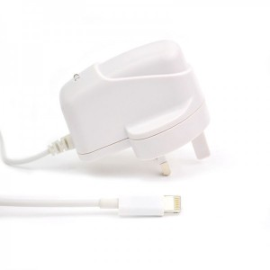 Wholesale 2.1A Travel Charger with Cable for iPad Mini
